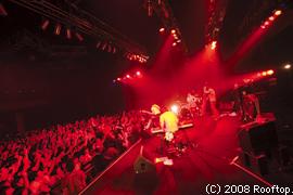 ミドリ live