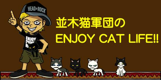 並木猫軍団のENJOY CAT LIFE!!