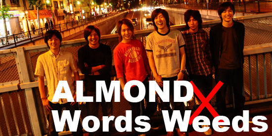 ALMOND×Words Weeds